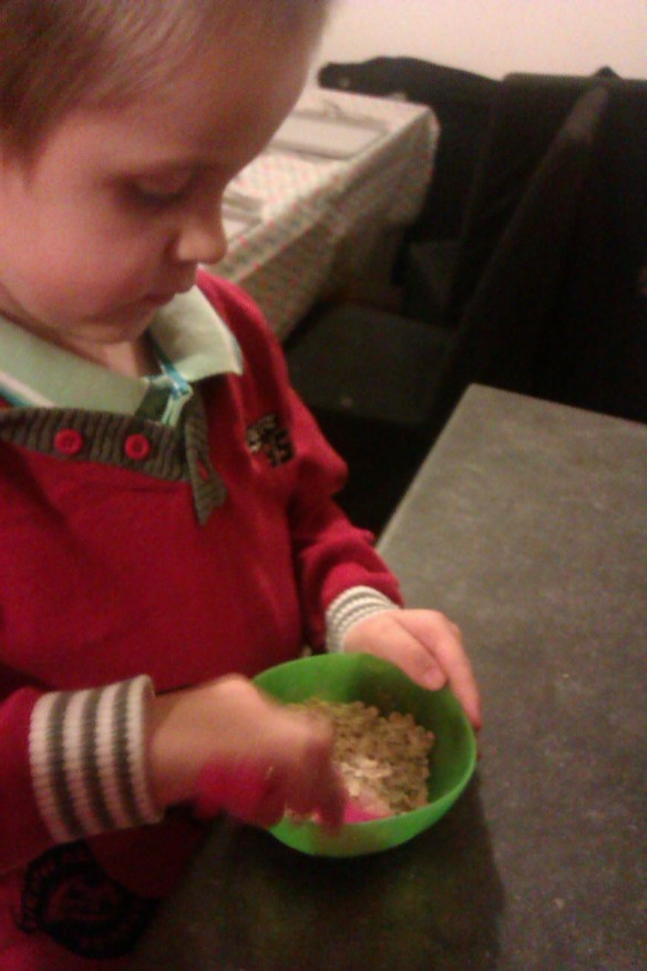Making reindeer food!