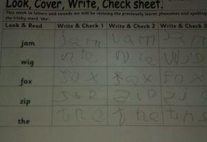 o level essay topics